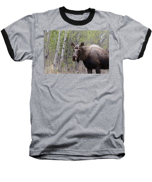 Baseball T-Shirt featuring the photograph Early Spring by Doug Lloyd
