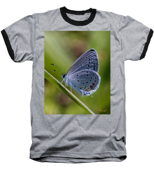 Eastern Tailed-blue Butterfly Din045 Baseball T-Shirt