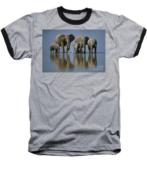 Elephants Baseball T-Shirt