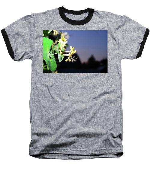 Evening Sonata. Perfoliata Baseball T-Shirt