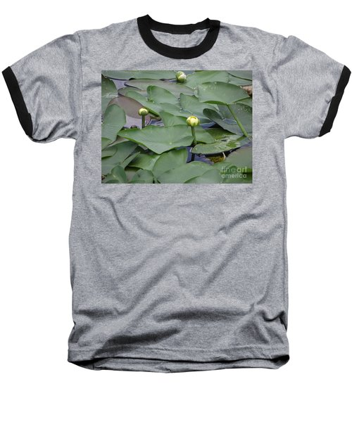 Everglade Beauty Baseball T-Shirt