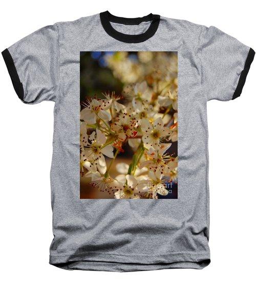 Faded Blossom Baseball T-Shirt