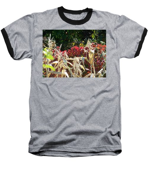 Fall Harvest Of Color Baseball T-Shirt