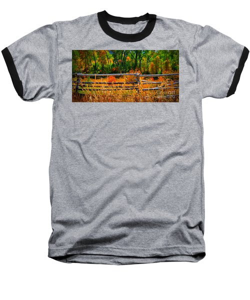 Fall  Baseball T-Shirt by Janice Westerberg