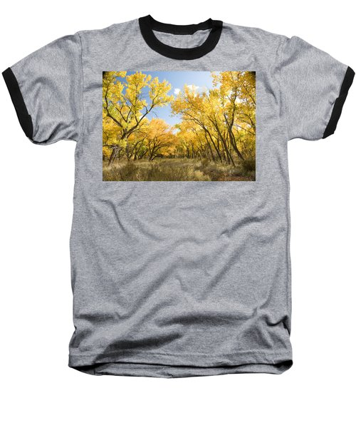 Fall Leaves In New Mexico Baseball T-Shirt