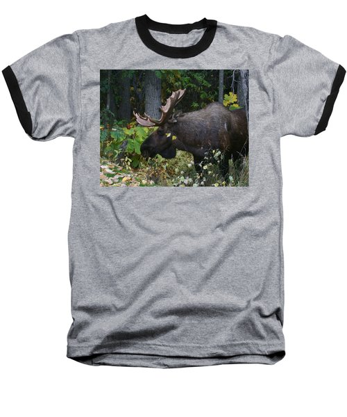 Baseball T-Shirt featuring the photograph Fall Master by Doug Lloyd