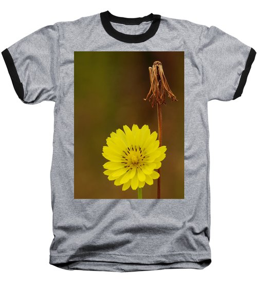 False Dandelion Flower With Wilted Fruit Baseball T-Shirt