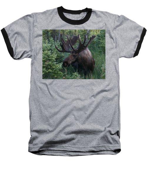 Baseball T-Shirt featuring the photograph Feeding Along by Doug Lloyd