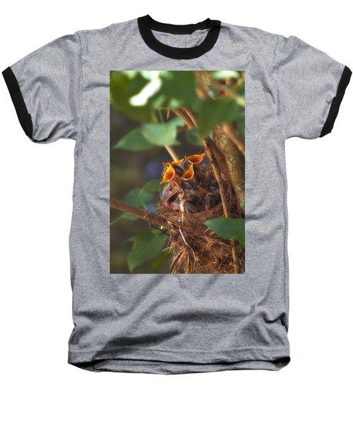 Feeding Time Baseball T-Shirt by Joann Vitali
