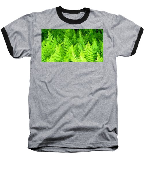 Ferns Galore Filtered Baseball T-Shirt