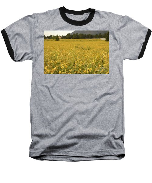 Field Of Yellow Daisy's Baseball T-Shirt