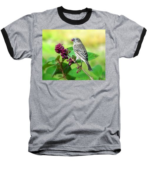 Finch Eating Beautyberry Baseball T-Shirt
