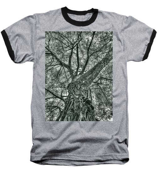 Finkles Landing Tree Baseball T-Shirt