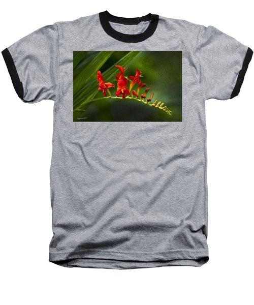Fire In The Garden Baseball T-Shirt