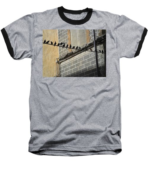 Baseball T-Shirt featuring the photograph Florentine Pigeons by Laurel Best