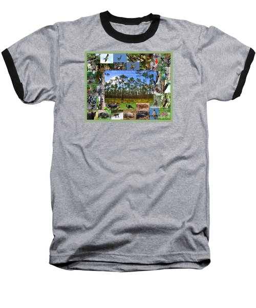 Florida Wildlife Photo Collage Baseball T-Shirt