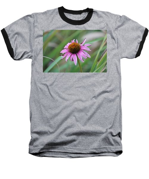 Flower At Waterfall Glen Forest Preserve Baseball T-Shirt