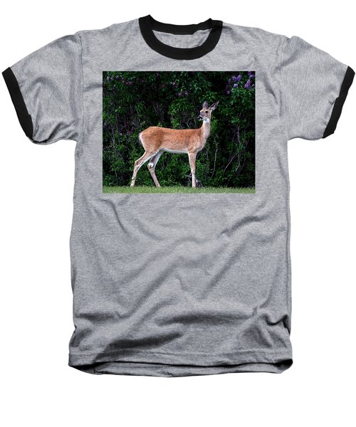 Baseball T-Shirt featuring the photograph Flower Deer by Steve McKinzie