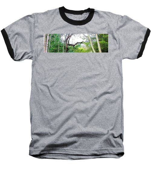 Baseball T-Shirt featuring the photograph Flying Branch by Pamela Hyde Wilson