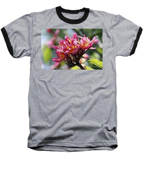 Frangipani Delight Baseball T-Shirt