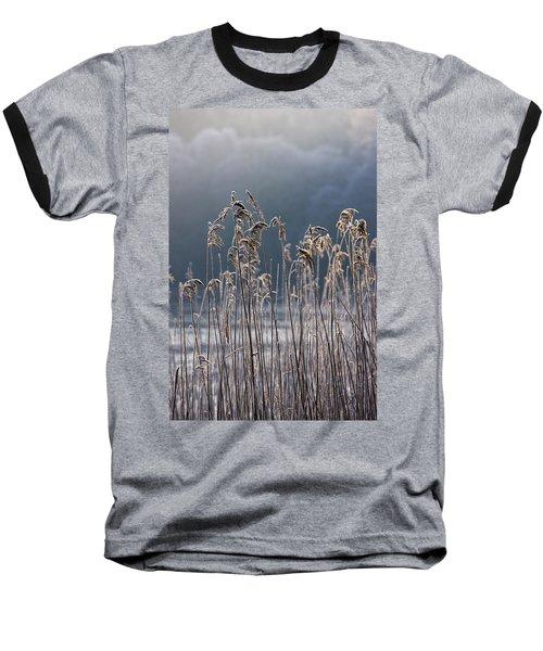 Frozen Reeds At The Shore Of A Lake Baseball T-Shirt