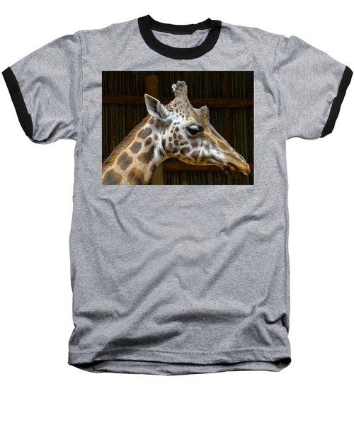 Gentle Man Baseball T-Shirt