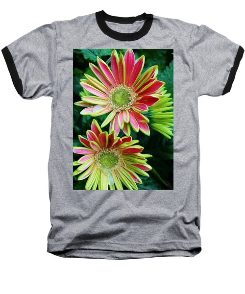 Baseball T-Shirt featuring the photograph Gerber Daisies by Bruce Bley