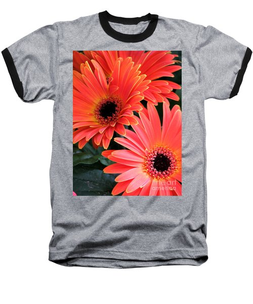 Baseball T-Shirt featuring the photograph Gerbera Bliss by Rory Sagner