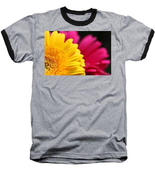 Gerbera Daisies Baseball T-Shirt by Diana Haronis