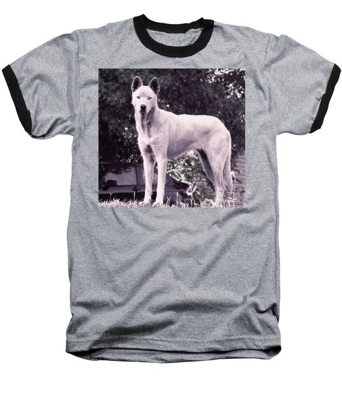 Baseball T-Shirt featuring the photograph Ghost The Wolf by Maria Urso