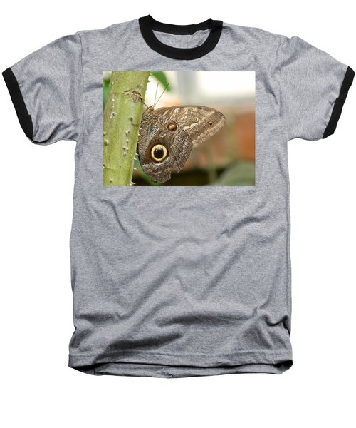 Baseball T-Shirt featuring the photograph Giant Owl Butterfly by Lynn Bolt