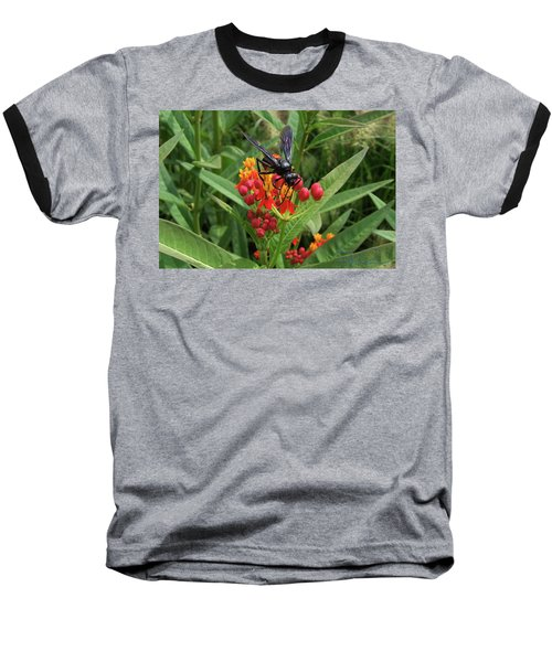 Giant Wasp Baseball T-Shirt
