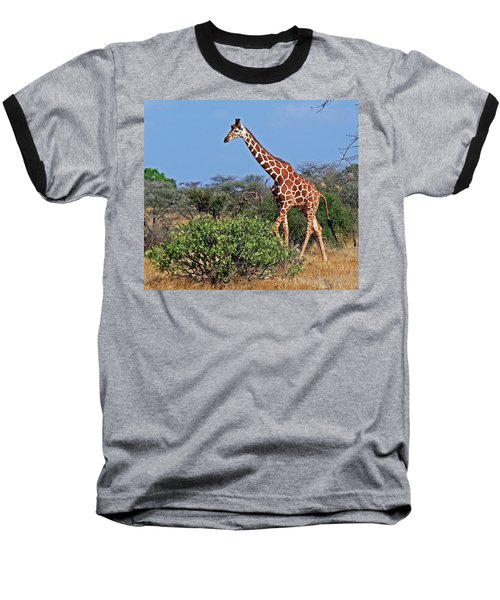 Giraffe Against Blue Sky Baseball T-Shirt