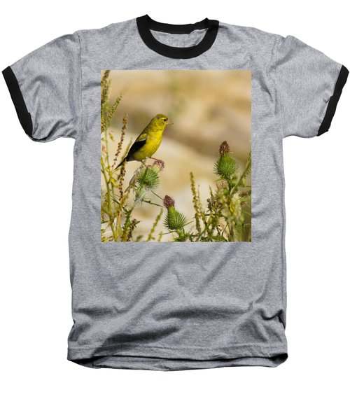 Goldfinch On Lookout Baseball T-Shirt