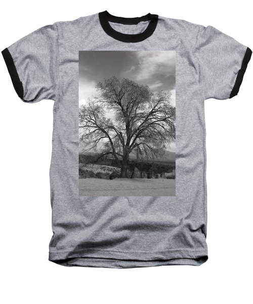 Grand Canyon Life Tree Baseball T-Shirt