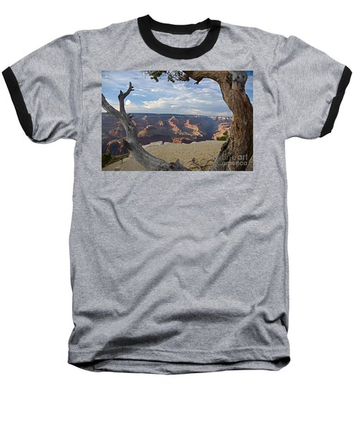 Grand Canyon Tree Baseball T-Shirt