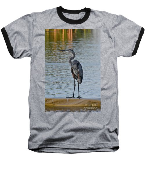 Baseball T-Shirt featuring the photograph Great Blue Heron by Carol  Bradley