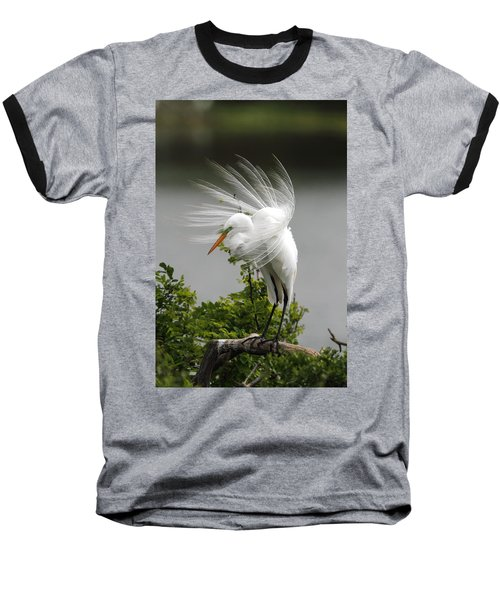 Great Egret Baseball T-Shirt