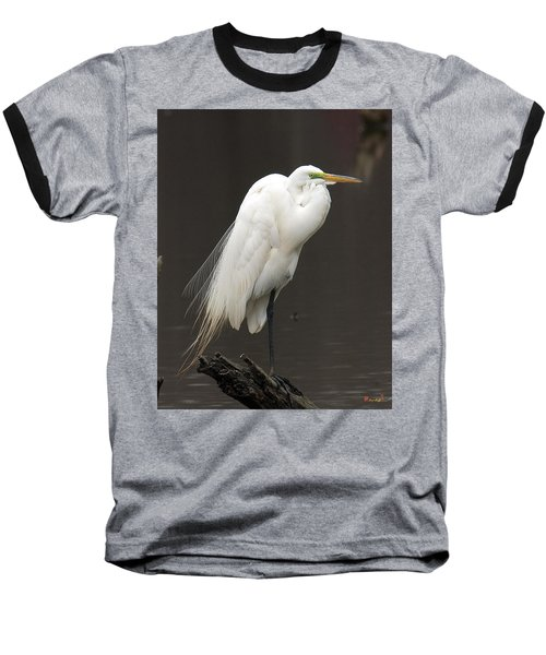 Great Egret Resting Dmsb0036 Baseball T-Shirt