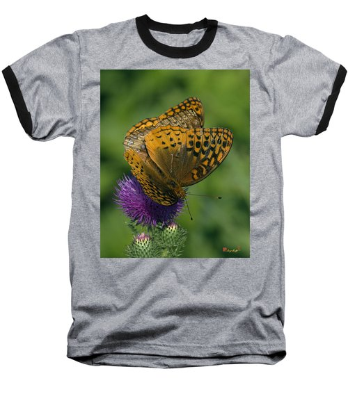 Great Spangled Fritillaries On Thistle Din108 Baseball T-Shirt