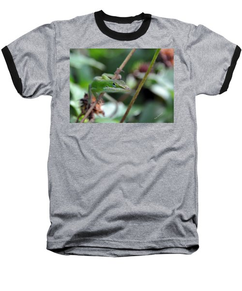 Green Anole Baseball T-Shirt