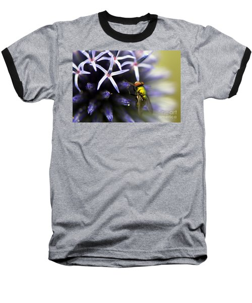 Green Metallic Fly On Globe Thistle Baseball T-Shirt
