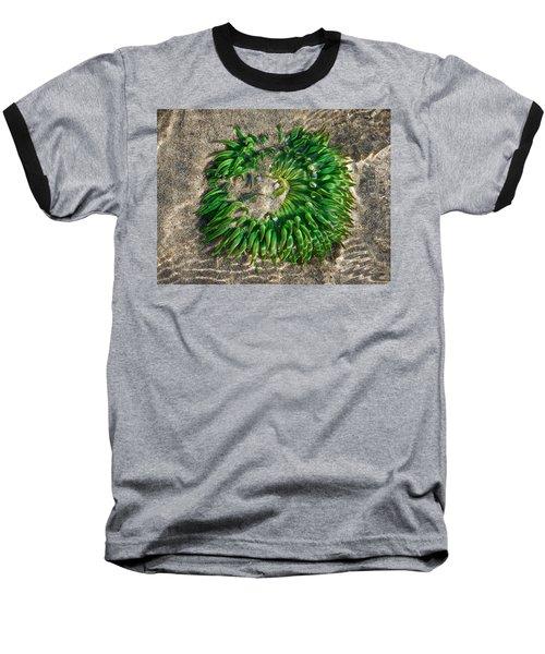 Green Sea Anemone Baseball T-Shirt