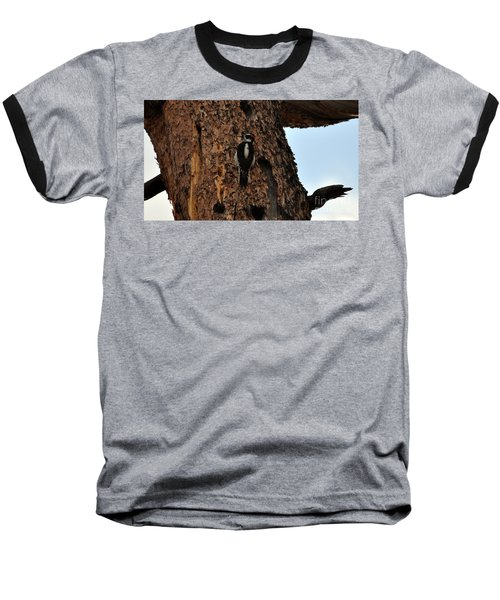 Hairy Woodpecker On Pine Tree Baseball T-Shirt