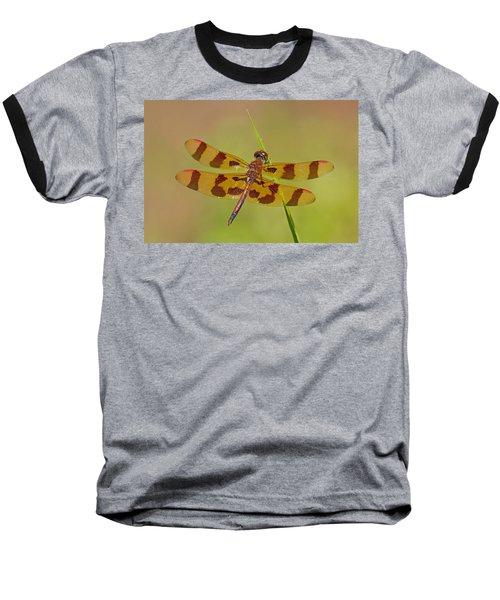 Halloween Pennant Baseball T-Shirt