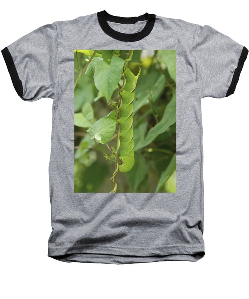 Hangin' Around Baseball T-Shirt by Kay Lovingood