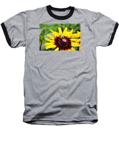 Baseball T-Shirt featuring the photograph Happy Rudbeckia by Tanya  Searcy