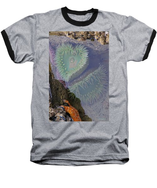 Heart Of The Tide Pool Baseball T-Shirt by Mick Anderson