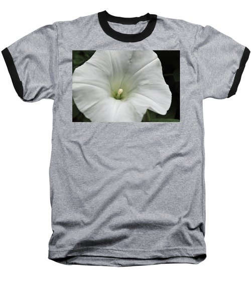 Baseball T-Shirt featuring the photograph Hedge Morning Glory by Tikvah's Hope