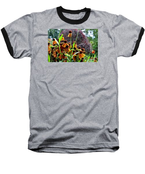 Helenium Sneezeweed  Baseball T-Shirt by Tanya  Searcy